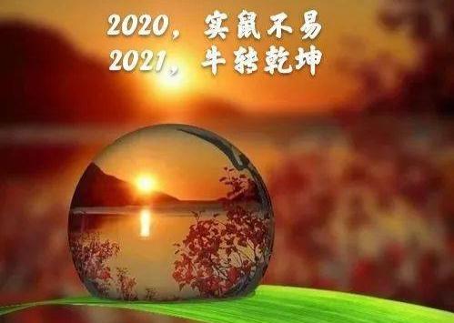 IMG_20210108_193032.jpg